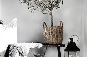 Zó maak je jouw interieur groener én stijlvoller