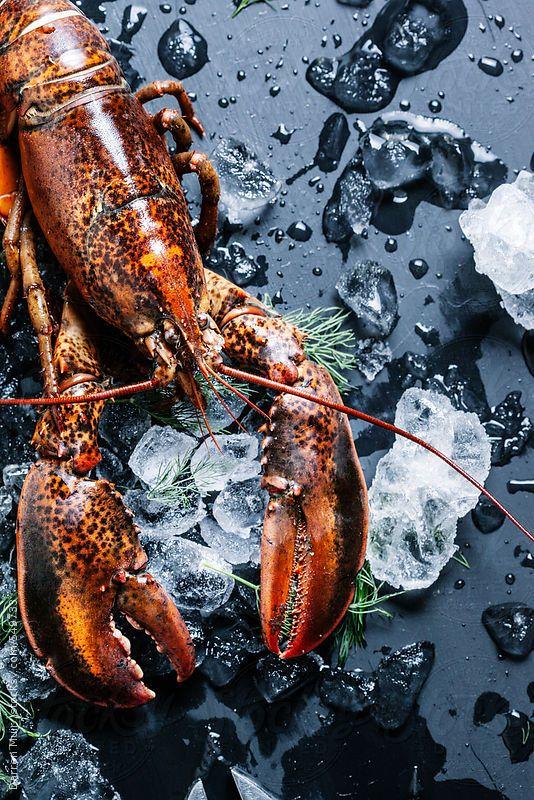 Lobster Heaven by 5&33
